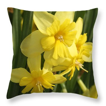 Tripartite Daffodil Throw Pillow by Judy Whitton