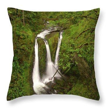 Triple Falls  Throw Pillow by Jeff Swan