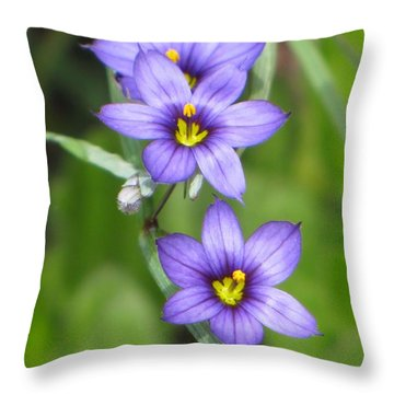 Triple Purple Throw Pillow by MTBobbins Photography