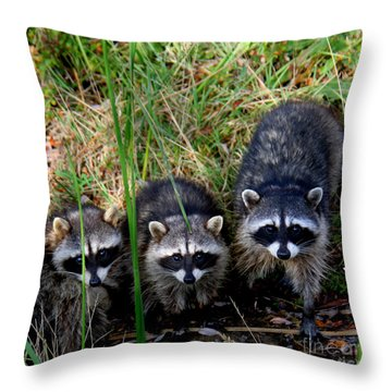 Throw Pillow featuring the photograph Triplets by Bob and Jan Shriner