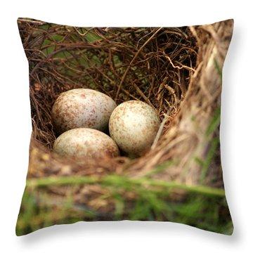 Triplets Throw Pillow by Debi Demetrion