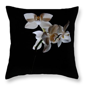 Throw Pillow featuring the photograph Triplets II Color by Ron White