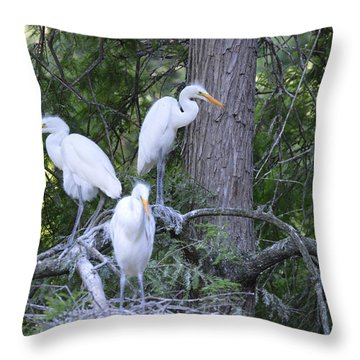 Triplets Throw Pillow by Judith Morris