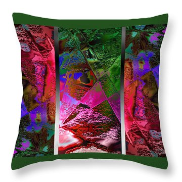 Triptych Chic Throw Pillow by Paula Ayers
