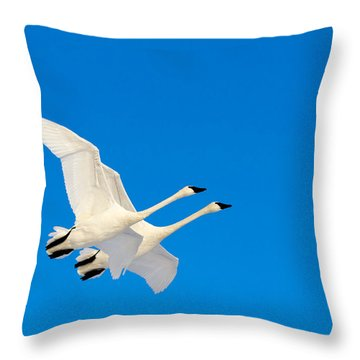 Triumphant Throw Pillow