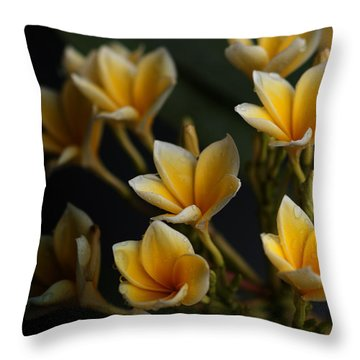 Throw Pillow featuring the photograph Tropic Welcome by Miguel Winterpacht