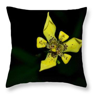 Throw Pillow featuring the photograph Tropic Yellow by Miguel Winterpacht
