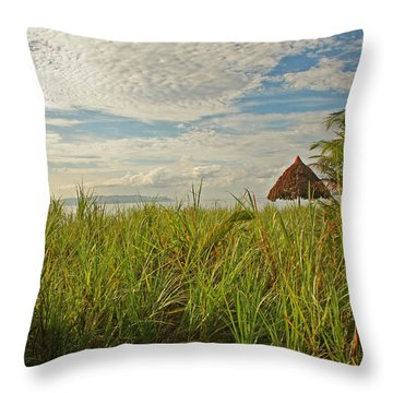 Throw Pillow featuring the photograph Tropical Beach Landscape by Peggy Collins