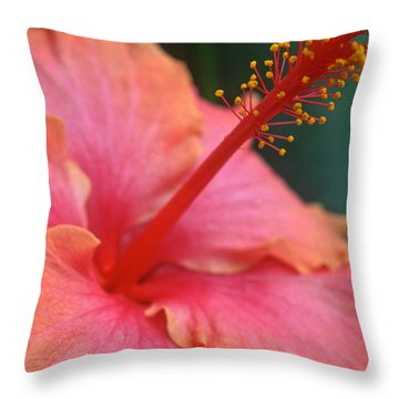 Tropical Beauty Throw Pillow by Kathy Yates