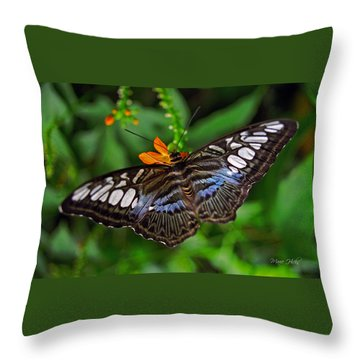 Throw Pillow featuring the photograph Tropical Butterfly by Marie Hicks