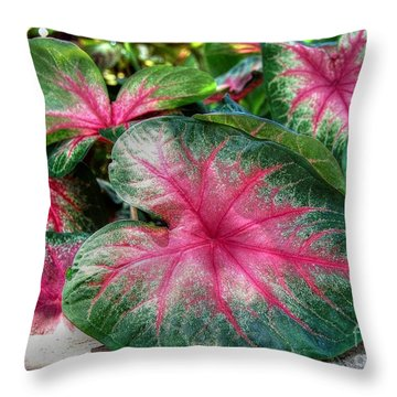 Throw Pillow featuring the photograph Tropical Delight by Kathy Baccari
