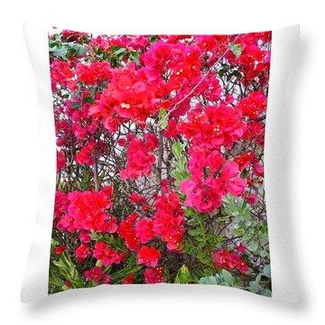 Tropical Flowers Of South Florida Throw Pillow by Dora Sofia Caputo Photographic Design and Fine Art