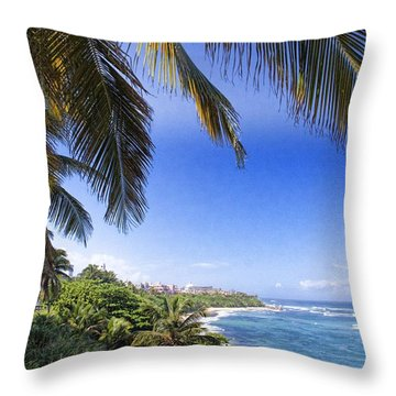 Throw Pillow featuring the photograph Tropical Holiday by Daniel Sheldon