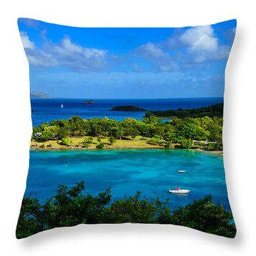 Tropical Paradise In The Virgin Islands Throw Pillow by Greg Norrell
