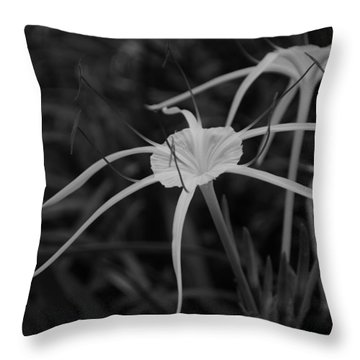 Throw Pillow featuring the photograph Tropical Paradise by Miguel Winterpacht