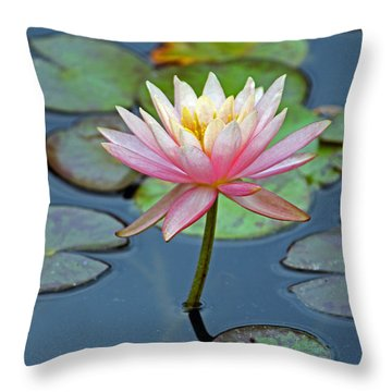 Tropical Pink Lily Throw Pillow