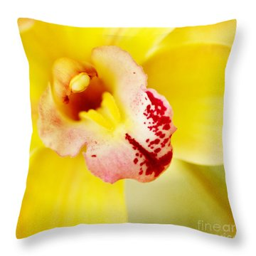 Tropical Punch Throw Pillow by Beve Brown-Clark Photography