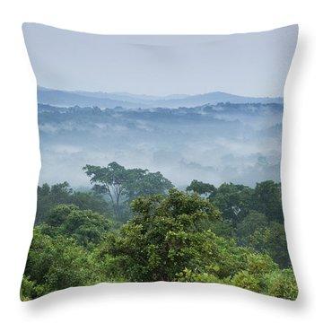 Tropical Rainforest Kibale Np Western Throw Pillow