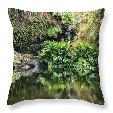 Tropical Reflections Throw Pillow by Denise Bird