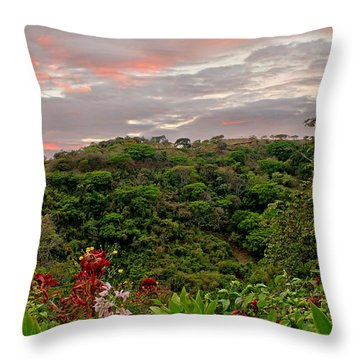 Throw Pillow featuring the photograph Tropical Sunset Landscape by Peggy Collins
