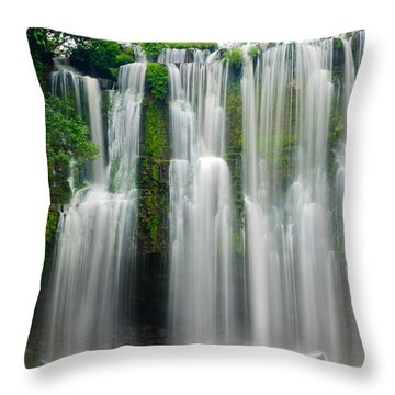 Tropical Waterfall Throw Pillow by Oscar Gutierrez