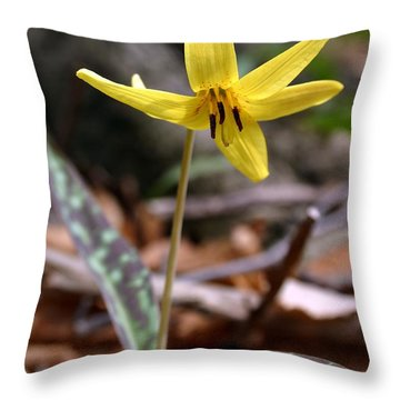 Throw Pillow featuring the photograph Trout Lily by Henry Kowalski