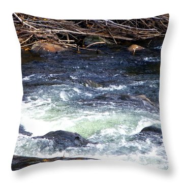 Throw Pillow featuring the photograph Trout River by Jackie Carpenter