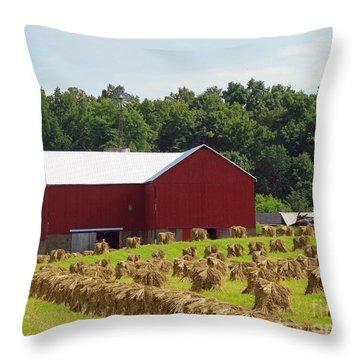 True Amish Farm Throw Pillow
