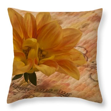 Truly Amazing  Throw Pillow by Sandra Foster