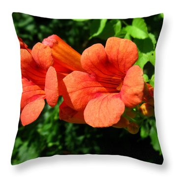 Wild Trumpet Vine Throw Pillow by William Tanneberger
