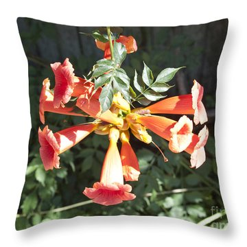 Trumpet Vine Flowers Throw Pillow