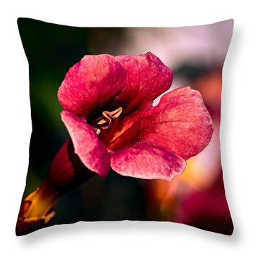 Trumpet Vine Throw Pillow