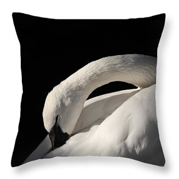 Trumpeter Throw Pillow by Karol Livote