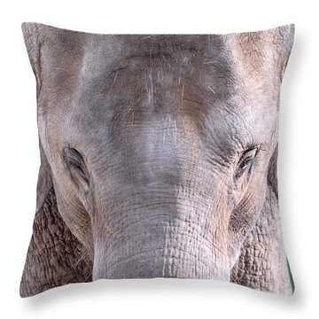 Throw Pillow featuring the photograph Truncated by Dyle   Warren