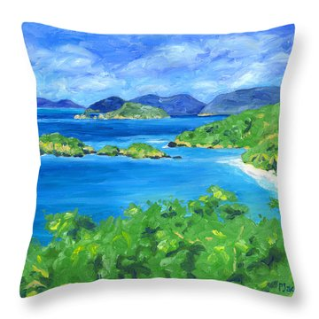 Trunk Bay Throw Pillow