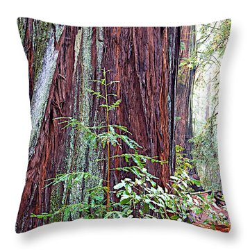 Trunk Of Coastal Redwood In Armstrong Redwoods State Preserve Near Guerneville-ca Throw Pillow
