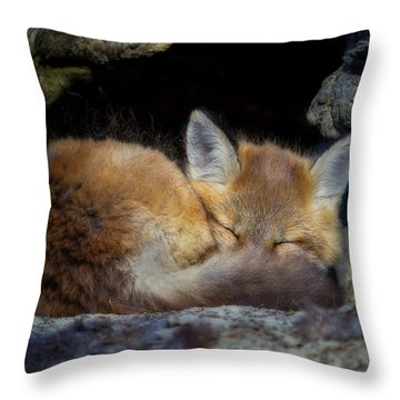 Fox Kit - Trust Throw Pillow