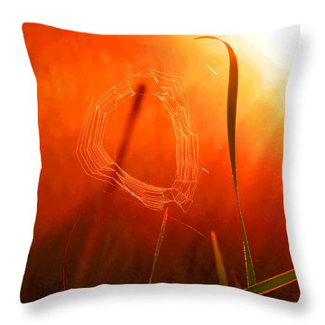 The Spider's Web In Golden Sunlight Throw Pillow