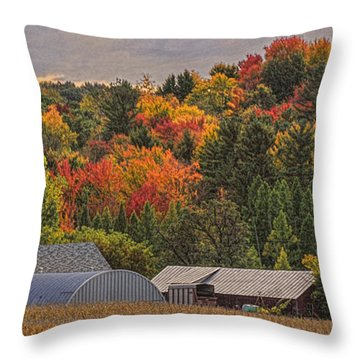 Tucked Away In Autumn Throw Pillow