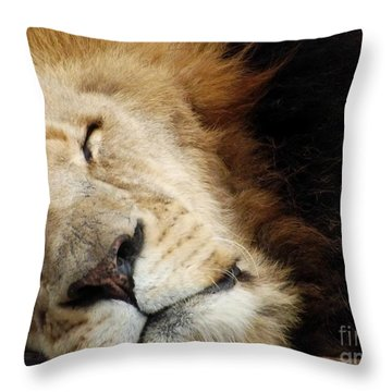 Tuckered Out Throw Pillow