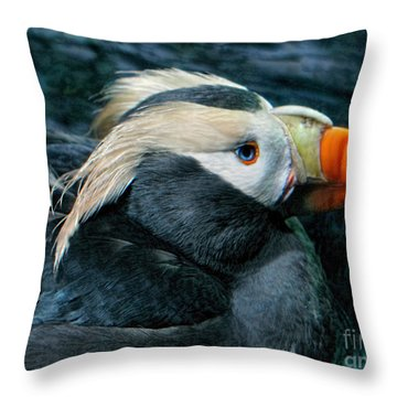 Tufted Puffin Profile Throw Pillow by Jennie Breeze