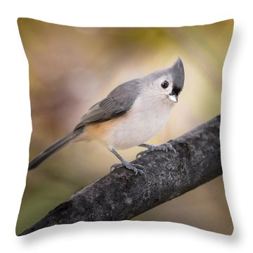 Tufted Titmouse Throw Pillow by Bill Wakeley