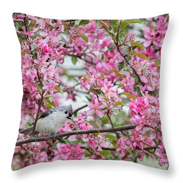 Tufted Titmouse In A Pear Tree Throw Pillow by Bill Wakeley