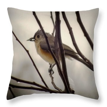 Tufted Titmouse Throw Pillow by Karen Wiles