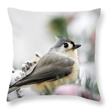 Tufted Titmouse Portrait Throw Pillow by Christina Rollo