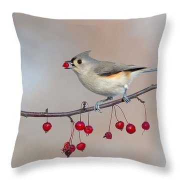 Tufted Titmouse With Red Berry Throw Pillow