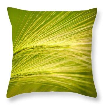 Tufts Of Ornamental Grass Throw Pillow by  Onyonet  Photo Studios