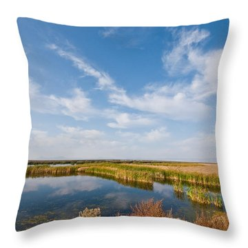 Throw Pillow featuring the photograph Tule Lake Marshland by Jeff Goulden
