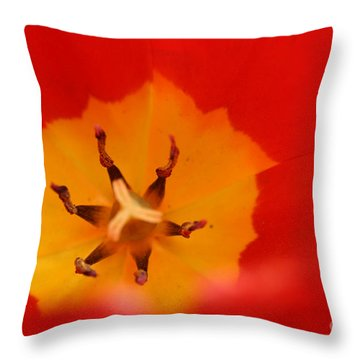 Tulip Collection Photo 3 Throw Pillow