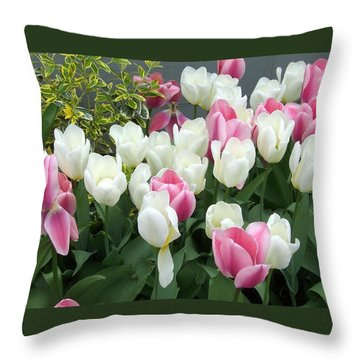 Purple And White Tulips Throw Pillow by Catherine Gagne